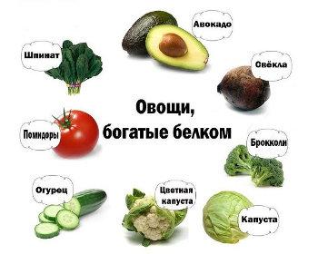 овощи белка